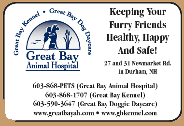 Great Bay Animal Hospital