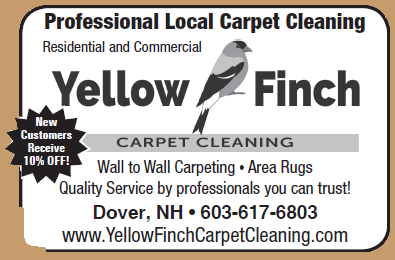 Yellow Finch Carpet Cleaning